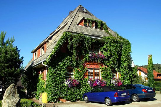 Pension Haus am Tannenhain